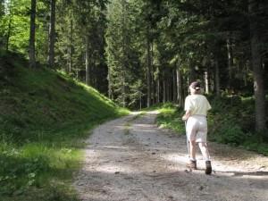 Pohajanje po naših gozdovih je zdravilo za telo in duha