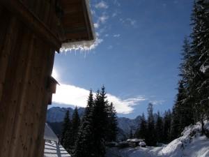 novo leto januar-zima2009 006